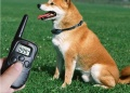 Remote Pet Training Collar with LCD Display  Range up to 300 Meters