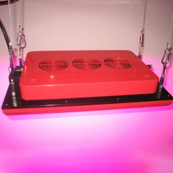 Growth Platform 75X3W LED grow light