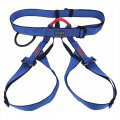 Outdoor Rock Climbing Harness High Altitude Working Safe Belt  Blue