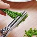 Culinary Herb Scissors 5 Blades Stainless Steel Shears with Cleaning Comb Handle Anti-slip SK1003
