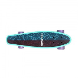 Arch Design Four-wheeled Skateboard Plastic Long Board Freestyle Teenager